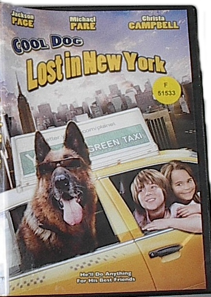 Image for Cool Dog Lost in New York
